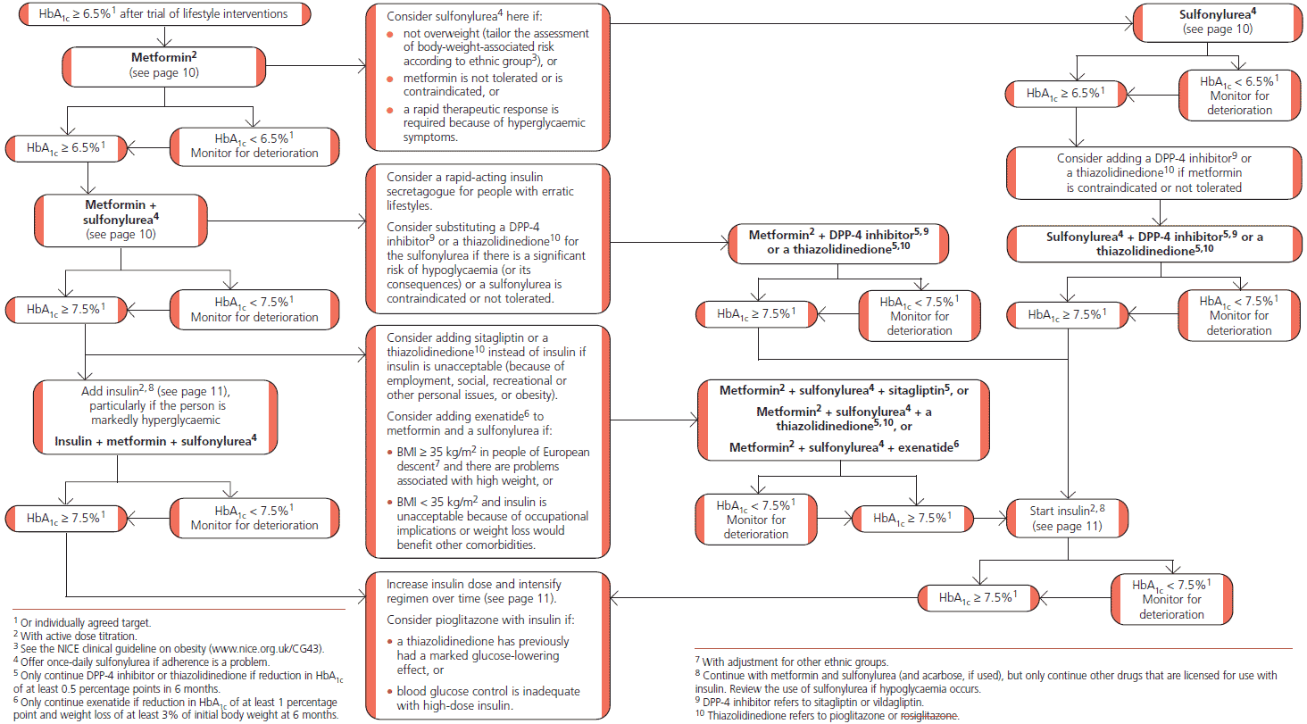 diabetes algorithm (dmalgo_nice.png)